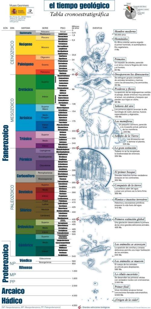 plioceno3