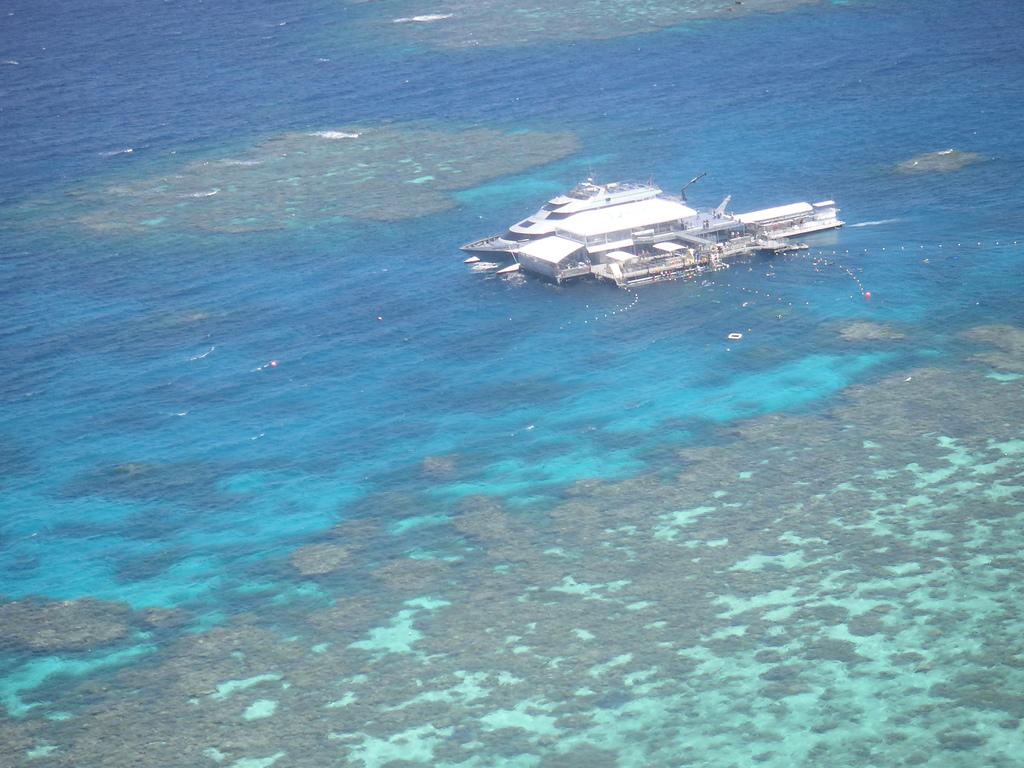 corales24